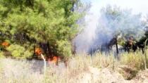 Hatay'daki orman yangınıyla alakalı 2 şüpheli yakalandı!