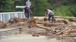Ayancık'ta vatandaşlar kışlık odununu selden topladı