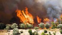 Terör örgütü YPG/PKK'nın 'ormanların yakılması' talimatı iddianamede!