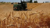 Çiftçilere destek ödemesi hesaplara yatıyor