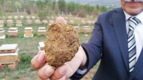 Koronavirüste talep arttı: Litresi 2 bin lira